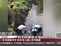 88岁老人河中救援