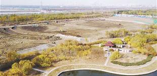 """临港湿地二期工程全面启动 打造""""鸟类停机坪"""""""
