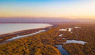博斯腾湖畔冬景如画