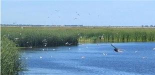 生态环境部通报:水质优良比例同比提高
